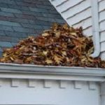 how to prepare your gutters-for autumn