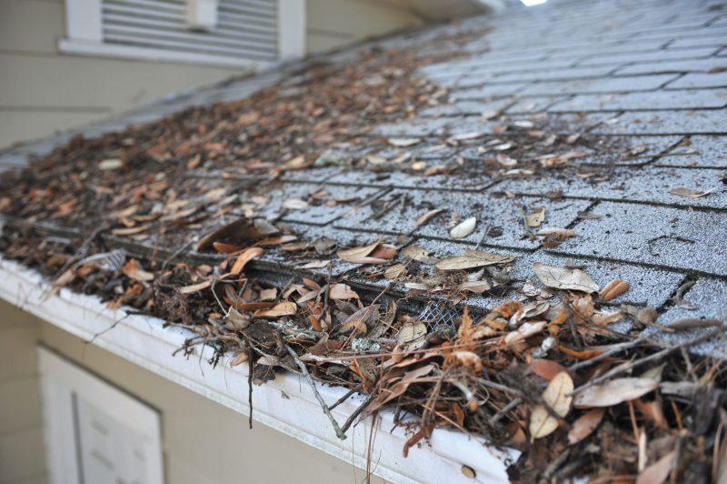preparation gutters-autumn
