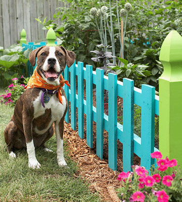 pets-fenced in garden