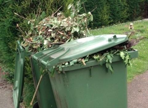 garden-waste