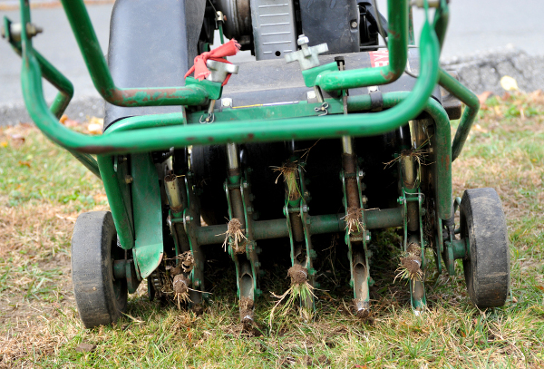 What are the benefits of aerating your lawn in winter
