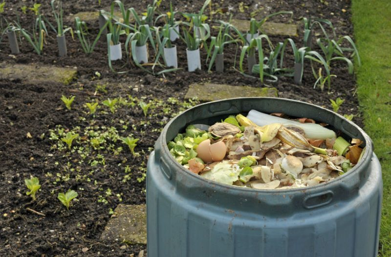 How to set up a compost bin